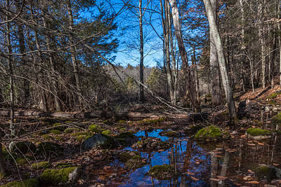 Photograph - Wompatuck State Park Hiking Reflections by Brian MacLean