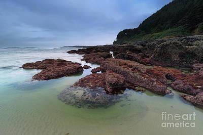 Strong America Photograph - Wonderful Coastline by Masako Metz