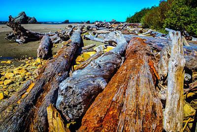 Driftwood Photograph - Wonderful Driftwood by Garry Gay