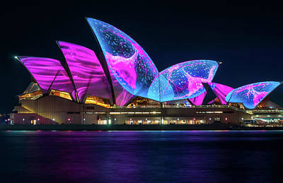 Photograph - Wonderful New Designs On The Opera House At Vivid Sydney by Daniela Constantinescu