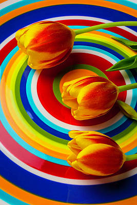 Leaf Ring Photograph - Wonderful Red Yellow Tulips by Garry Gay