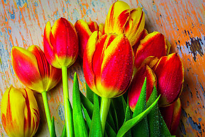 Wonderful Spring Tulips Art Print by Garry Gay