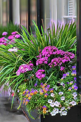 Photograph - Wonderful Window Boxes Of Charleston by Cindy Lark Hartman