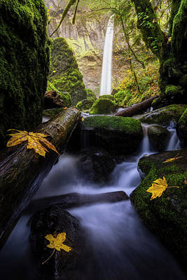 Photograph - Wonderland In The Gorge by Bjorn Burton