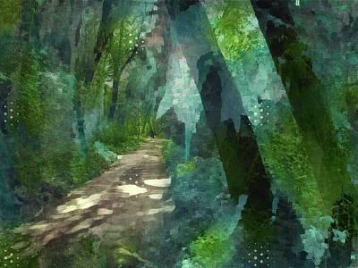 Dappled Light Photograph - Wonderland by Suzy Norris