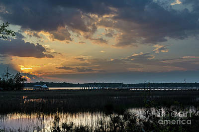 Photograph - Wonders Of Winter In The Lowcountry by Dale Powell
