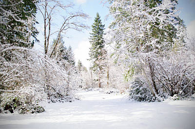 Photograph - Wondrous Winter Wonder Land by Tikvah's Hope