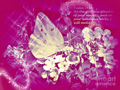 Colias Philodice Photograph - Wondrous Works -  Icy Princess With Verse by Anita Faye