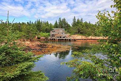 Photograph - Wonsqueak Harbor Maine by Elizabeth Dow