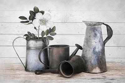 Photograph - Wood And Patina by Robin-Lee Vieira
