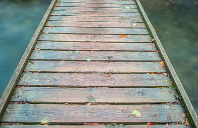 Photograph - Wood And Water IIi by Helen Northcott