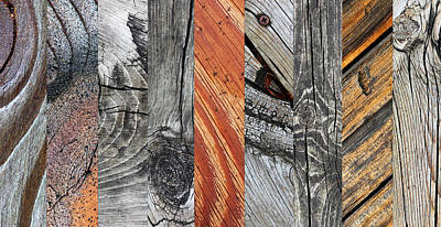 Photograph - Wood Art 1 by Mary Bedy
