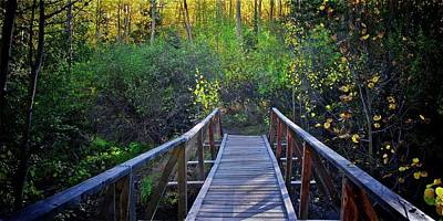 Photograph - Wood Bridge Crossing, Guanella Pass Road, Colorado by Flying Z Photography by Zayne Diamond