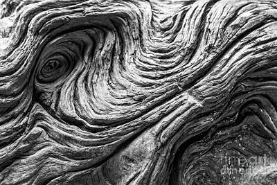 Photograph - Wood Detail by Delphimages Photo Creations