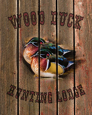 With Red Photograph - Wood Duck Hunting Lodge by TL Mair