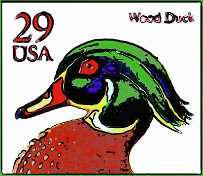 Carolina Duck Painting - Wood Duck by Lanjee Chee