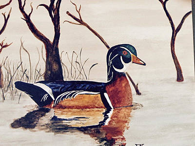 Painting - Wood Duck No. 2 by Donald Paczynski