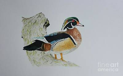 Wood Duck Painting - Wood Duck On Log by Laura Banister