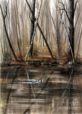 Wood Duck Painting - Wood Duck On Pond by Mary Tuomi