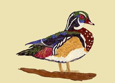 Wood Duck Mixed Media - Wood Duck by Susanne Lorenzi