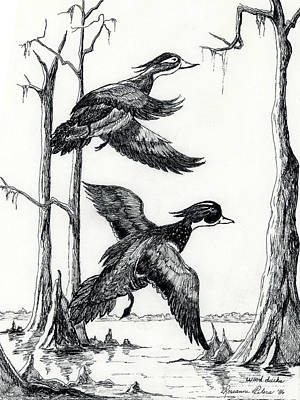 Upland Game Birds Painting - Wood Ducks Taking Flight by Roseanne Marie Peters