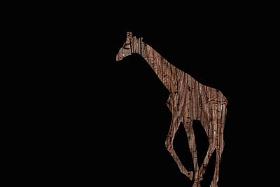 Digital Art - Wood Giraffe by Ernie Echols