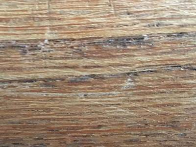 Photograph - Wood Grain 1 by Erika Chamberlin