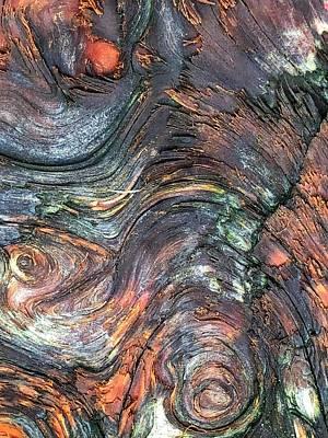 Photograph - Wood Grain by Bonnie Bruno