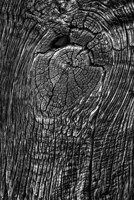 Photograph - Wood Grain Texture by Edgar Laureano