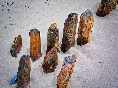 Photograph - Wood In Sand by Hans Erik Nielsen