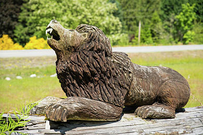 Photograph - Wood Lion In Concrete by Tom Cochran