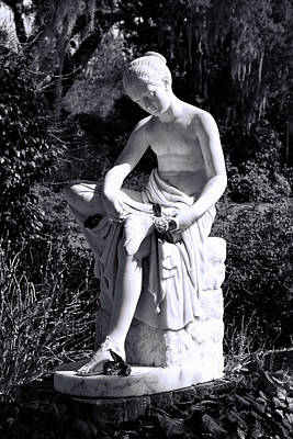 Photograph - Wood Nymph by Ed Waldrop