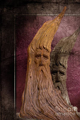 Photograph - Wood Nymphs by Al Bourassa