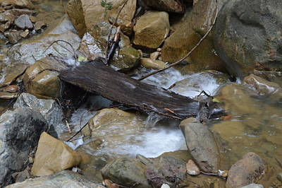 Photograph - Wood Over Rushing Stream by Warren Thompson