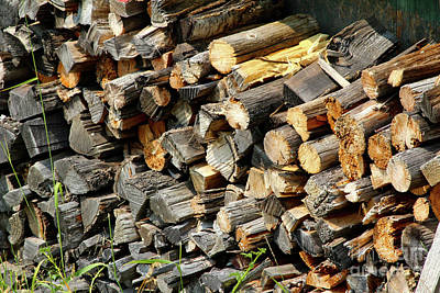 Photograph - Wood Pile by Ann E Robson