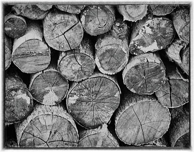 Photograph - Wood Pile by Michael Raiman