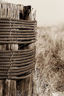 Photograph - Wood Piling Secured By Steel Cable - Sepia by Joni Eskridge