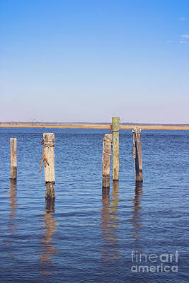 Photograph - Wood Pilings On The Mullica River by Colleen Kammerer
