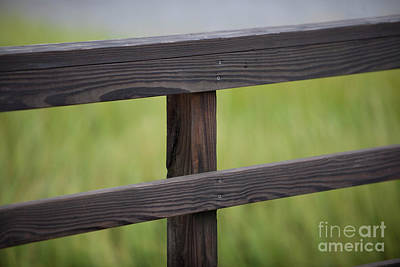 Photograph - Wood Railing Over The Marsh by Dale Powell