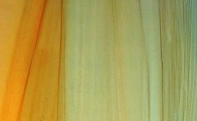 Wood Stain Art Print