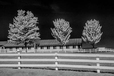 Photograph - Wood White Fence And Trees In Infrared by Randall Nyhof