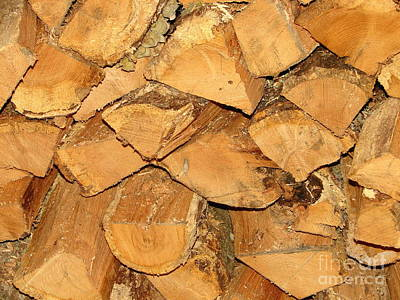 Photograph - Wood You? by Lew Davis