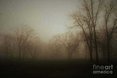 Photograph - A New Day by Inspired Arts