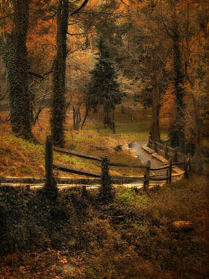 Wooded Path Art Print by Jessica Jenney