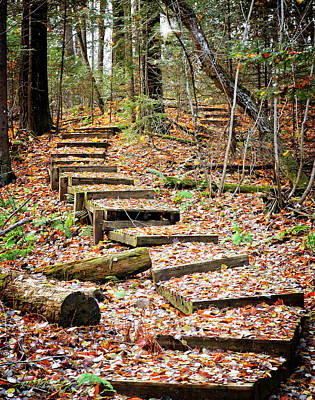 Riverstone Gallery Photograph - Wooded Stairs by Allyson Schwartz