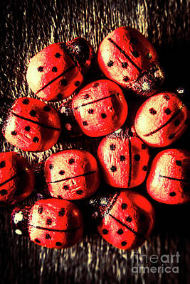 Ladybug Wall Art - Photograph - Wooden Beetle Bugs by Jorgo Photography - Wall Art Gallery