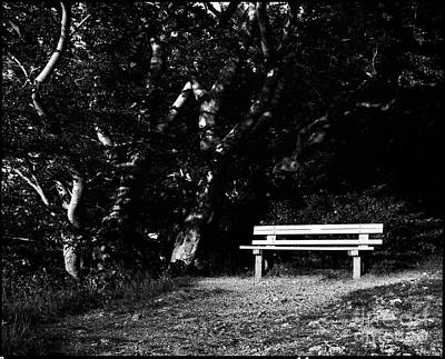 Photograph - Wooden Bench In B/w by Benjamin Wiedmann