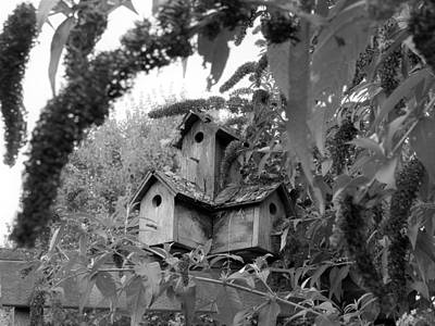 Photograph - Wooden Birdhouses by Katie Wing Vigil