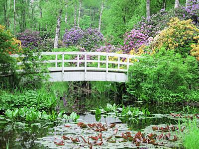Photograph - Wooden Bridge by Chevy Fleet