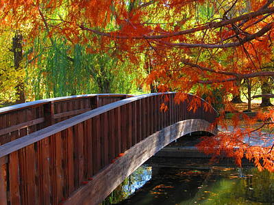 Going Green - Wooden Bridge by John Diebolt